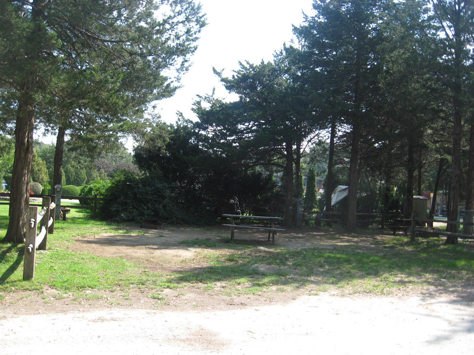Site 64Y