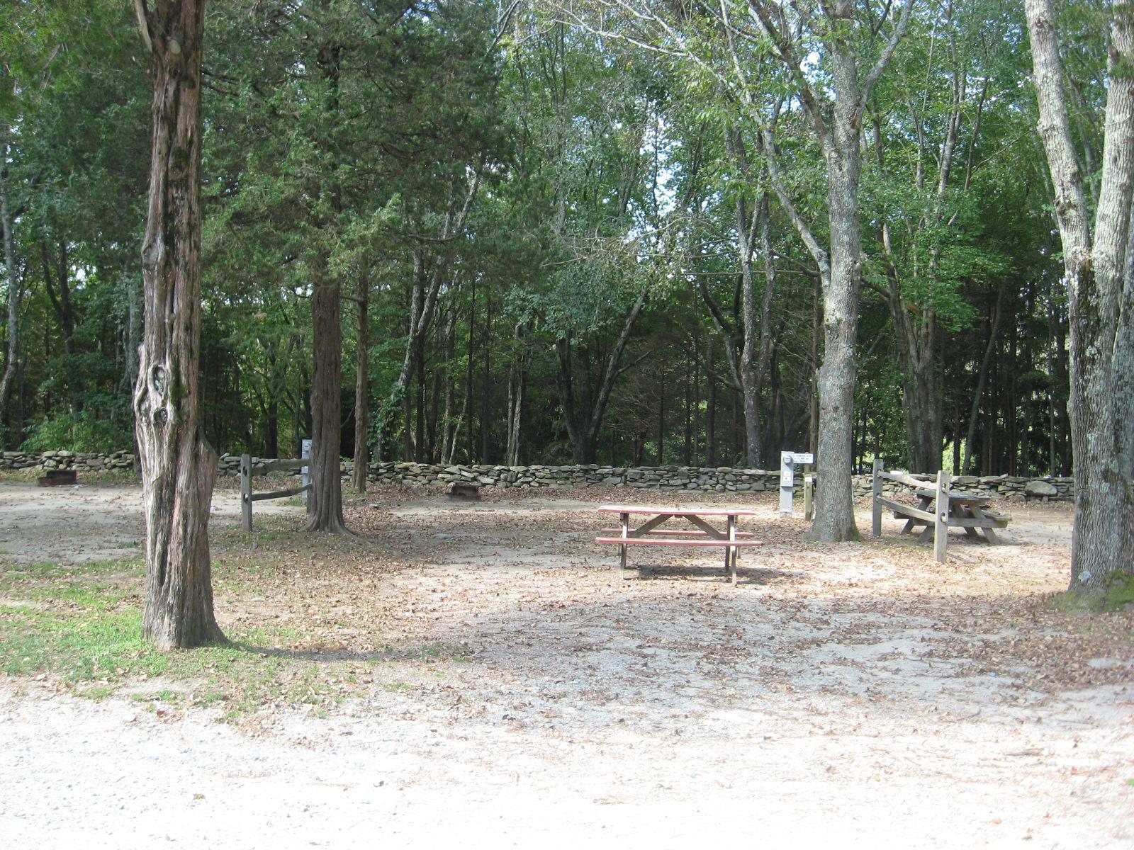 Site 84