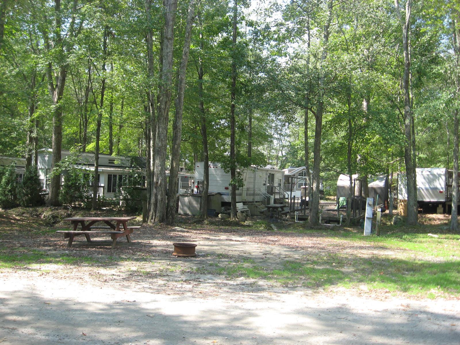 Site 254