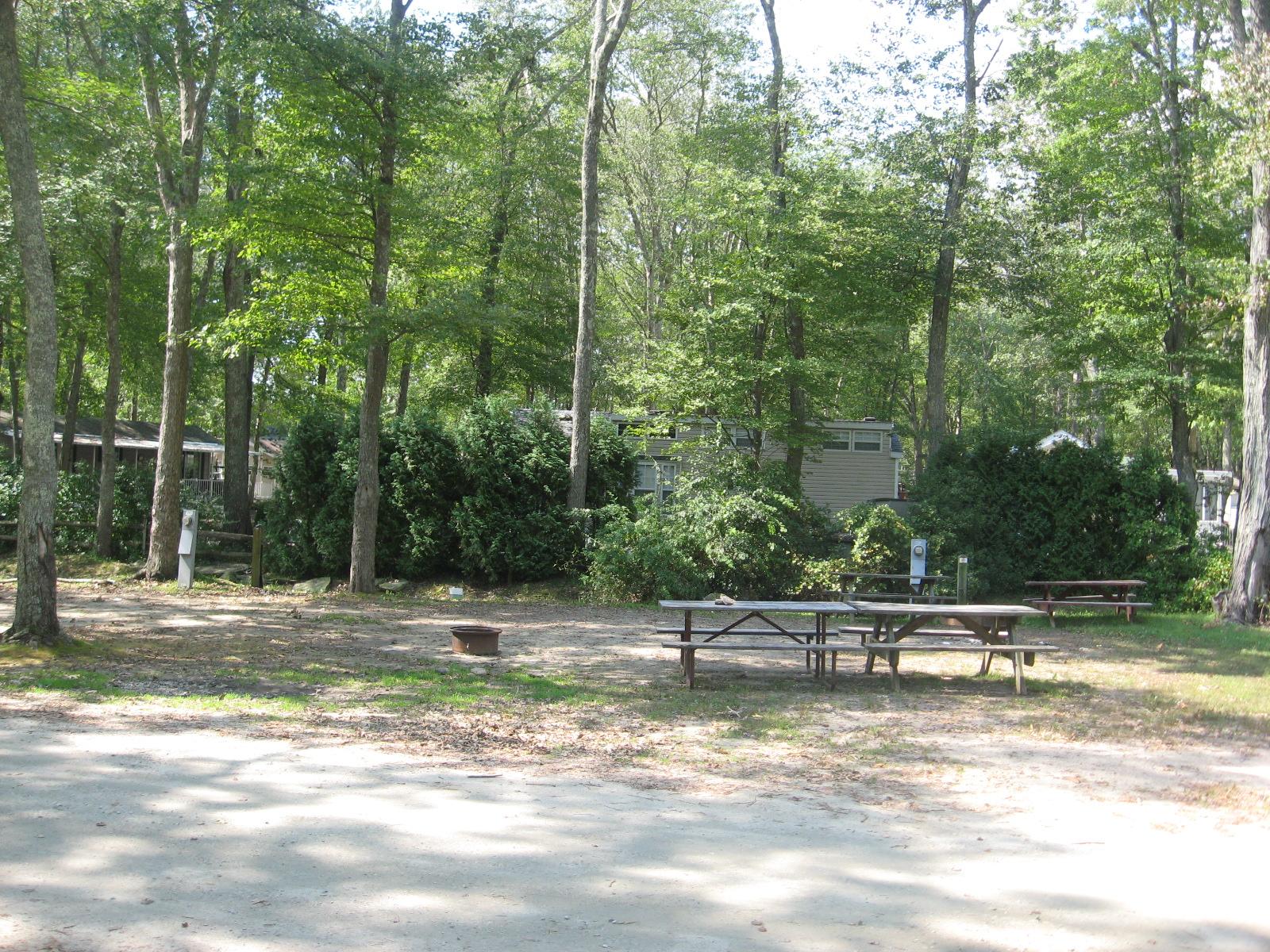 Site 257