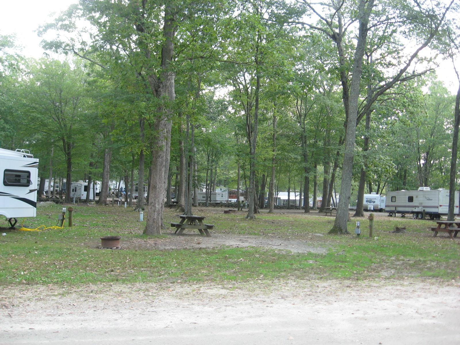 Site 269