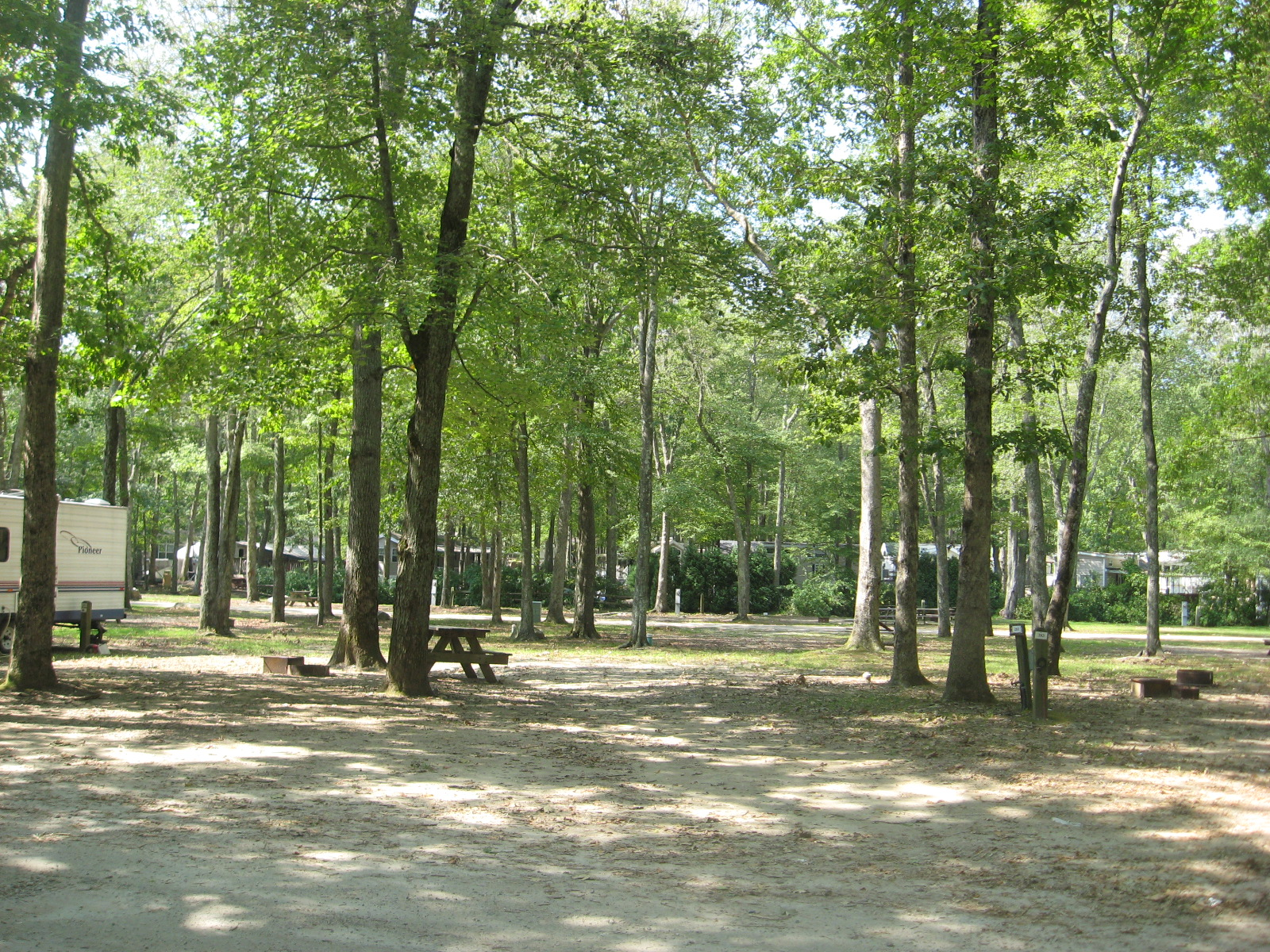 Site 283