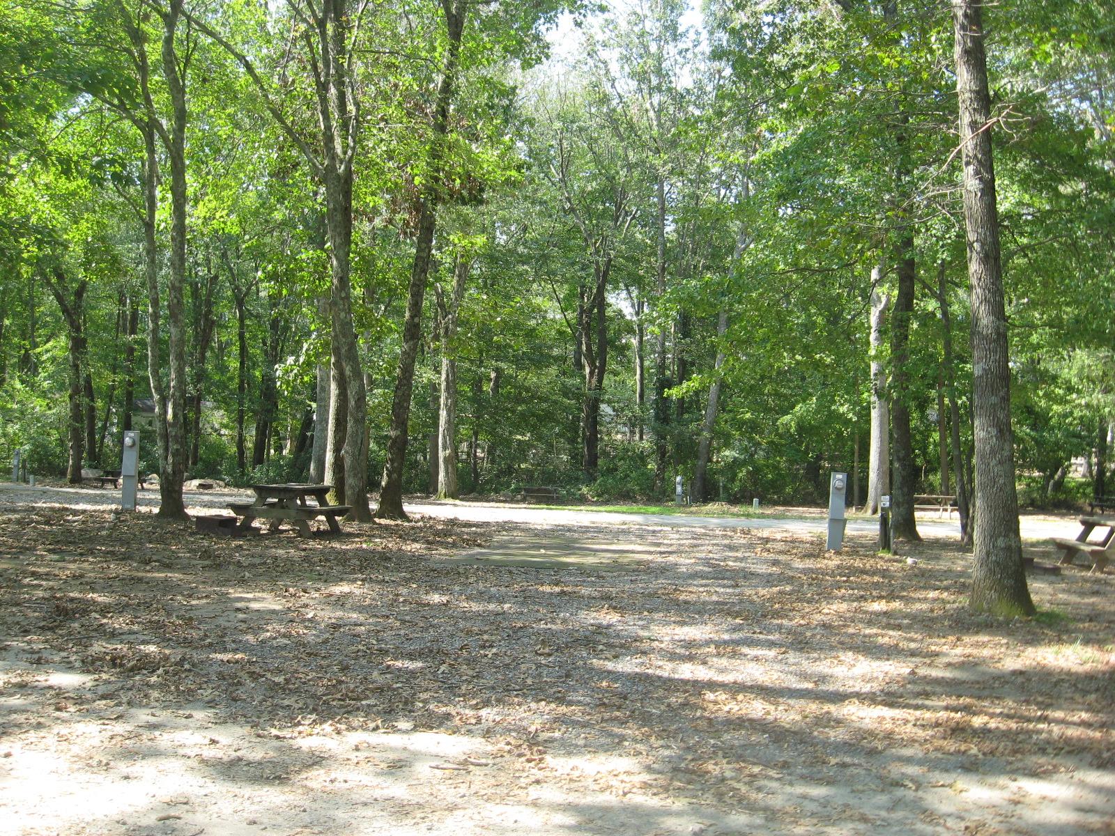 Site 324