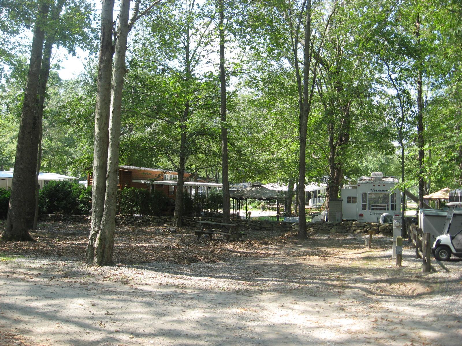 Site 342