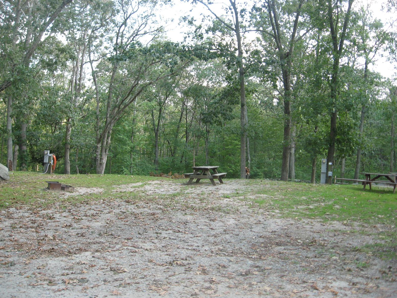 Site 394