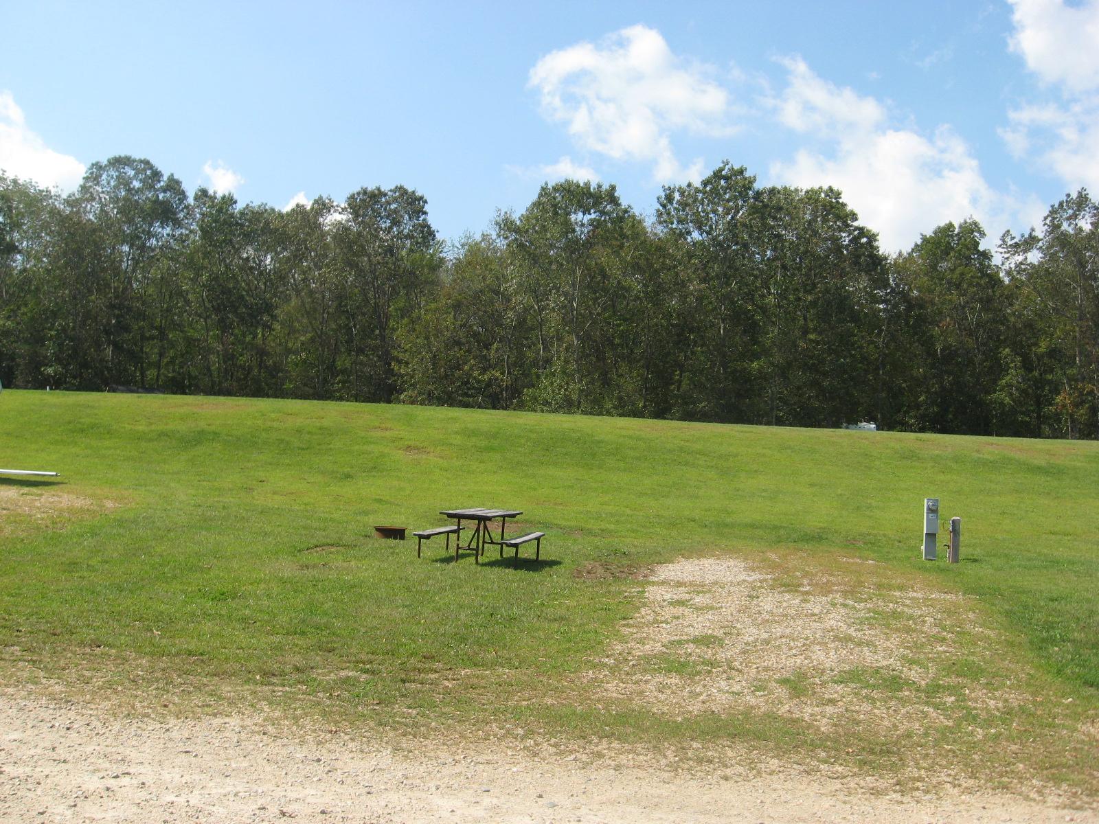 Site 407