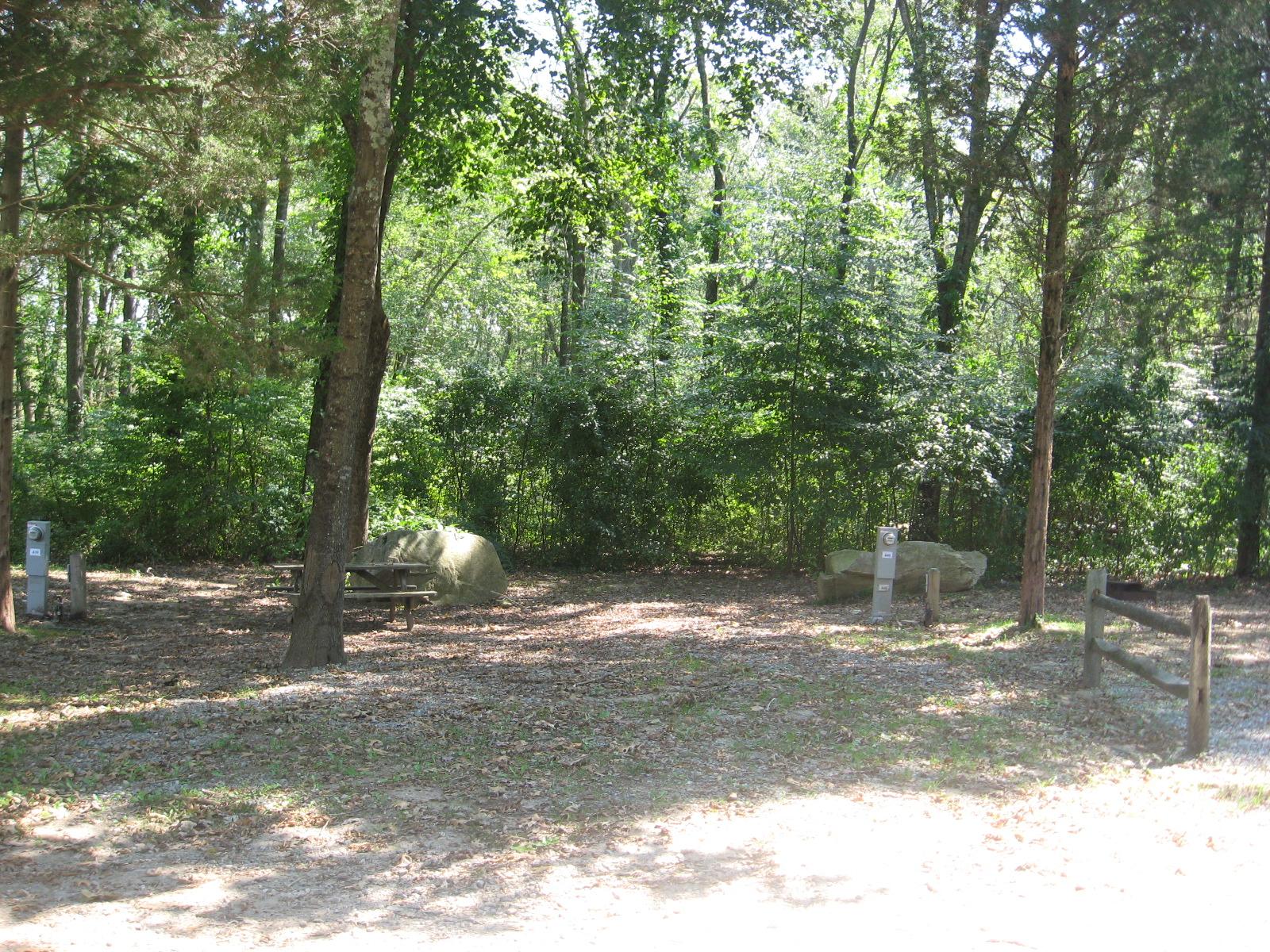 Site 440