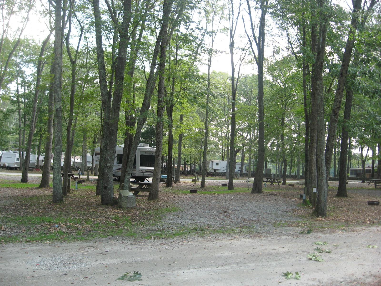 Site 273